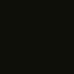 PROVOC Gel Eye Liner Black Glitter WP 99 Black Caviar - Color Strip