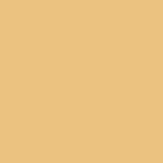 PROVOC Gel Eye Liner WP 51 Sun Kissed - Color Strip
