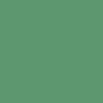 PROVOC Gel Eye Liner WP 76 Mesmerize Me - Color Strip