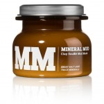 Salt of the Earth - MM  Mineral Mud Mask